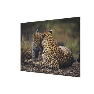 Masai Mara National Reserve 7 Canvas Print