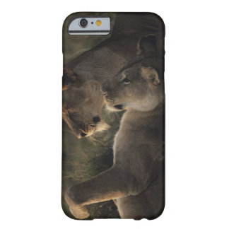 Masai Mara National Reserve 7 Barely There iPhone 6 Case