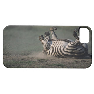 Masai Mara National Reserve, Kenya 2 iPhone 5 Case
