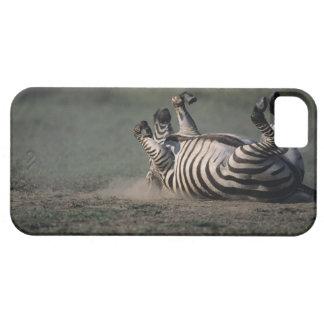 Masai Mara National Reserve, Kenya 2 iPhone SE/5/5s Case
