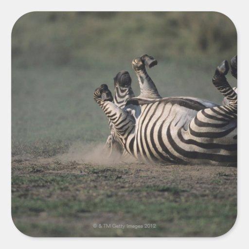 Masai Mara National Reserve, Kenya 2 Square Sticker