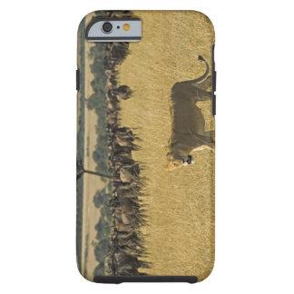 Masai Mara National Reserve, Kenya, Africa Tough iPhone 6 Case