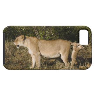 Masai Mara National Reserve, Kenya iPhone SE/5/5s Case