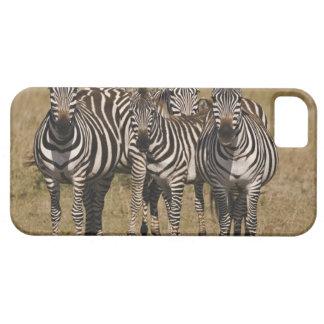 Masai Mara National Reserve, Kenya, Jul 2005 2 iPhone 5 Case