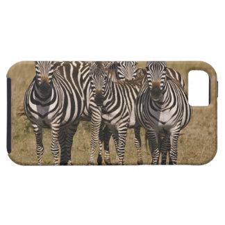 Masai Mara National Reserve, Kenya, Jul 2005 2 iPhone SE/5/5s Case