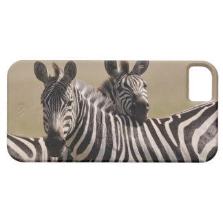 Masai Mara National Reserve, Kenya, Jul 2005 3 iPhone SE/5/5s Case