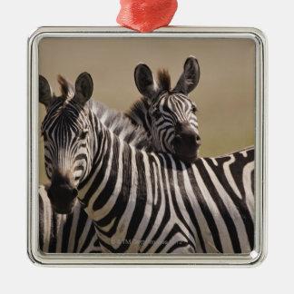 Masai Mara National Reserve, Kenya, Jul 2005 3 Metal Ornament
