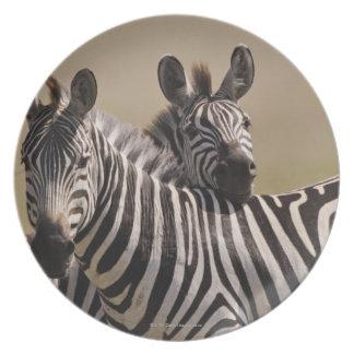 Masai Mara National Reserve, Kenya, Jul 2005 3 Plate