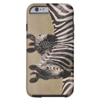 Masai Mara National Reserve, Kenya, Jul 2005 3 Tough iPhone 6 Case