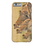 Masai Mara National Reserve, Kenya, Jul 2005 Barely There iPhone 6 Case