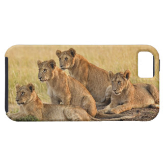 Masai Mara National Reserve, Kenya, Jul 2005 iPhone 5 Cases
