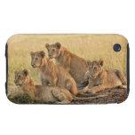 Masai Mara National Reserve, Kenya, Jul 2005 Tough iPhone 3 Case