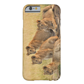 Masai Mara National Reserve, Kenya, Jul 2005 Barely There iPhone 6 Case