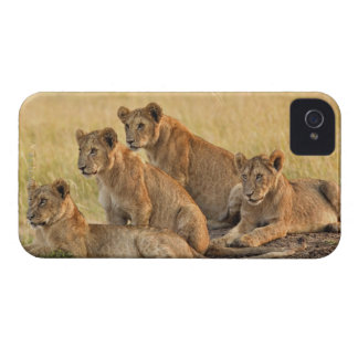 Masai Mara National Reserve, Kenya, Jul 2005 iPhone 4 Case
