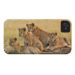 Masai Mara National Reserve, Kenya, Jul 2005 iPhone 4 Case-Mate Cases
