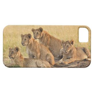 Masai Mara National Reserve, Kenya, Jul 2005 iPhone SE/5/5s Case