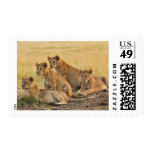 Masai Mara National Reserve, Kenya, Jul 2005 Stamp