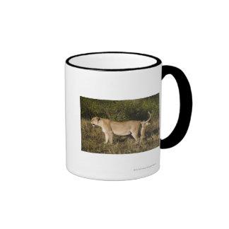 Masai Mara National Reserve, Kenya Ringer Coffee Mug