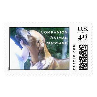 Masaje y carrocería de CompanionAnimal Sello