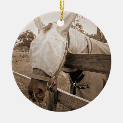 máscara del tábano sobre sepia de la cerca adorno redondo de cerámica
