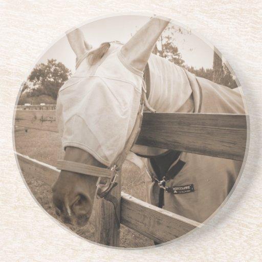 máscara del tábano sobre sepia de la cerca posavasos personalizados