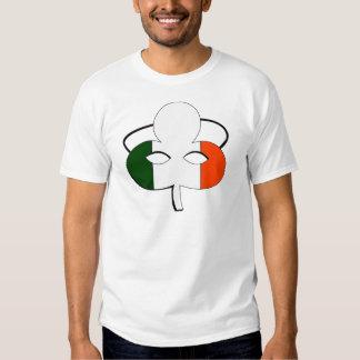 Máscara irlandesa de la bandera playera