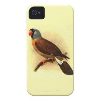 Mascarinus Mascarinus Case-Mate iPhone 4 Case