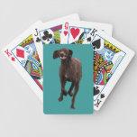 Mascota-amante alemán del indicador de pelo corto baraja de cartas