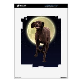 Mascota-amante alemán del indicador de pelo corto iPad 2 calcomanías