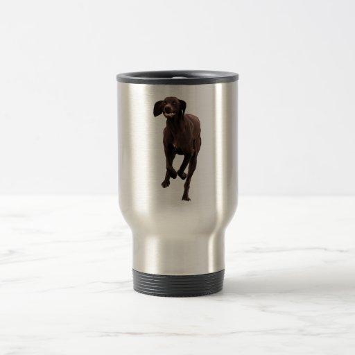 Mascota-amante alemán del indicador de pelo corto taza térmica