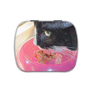 mascota animal del gato de la cabeza del rosa de frascos de dulces