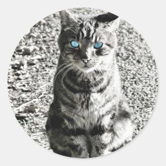 Mascota animal del gato pegatina redonda