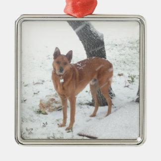 Mascota de la colección del navidad o foto de adorno navideño cuadrado de metal