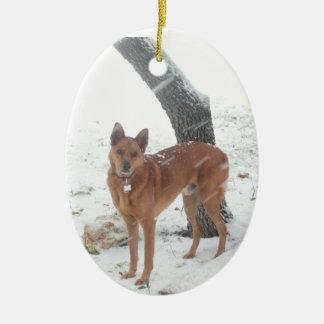 Mascota de la colección del navidad o foto de adorno navideño ovalado de cerámica