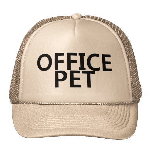 Mascota de la oficina gorra