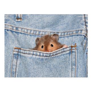 Mascota del bolsillo postal