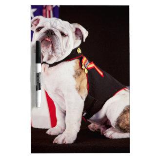 mascota del funcionario de la marina de guerra del pizarra blanca
