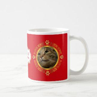 Mascota del gato en recuerdo cariñoso del taza de café