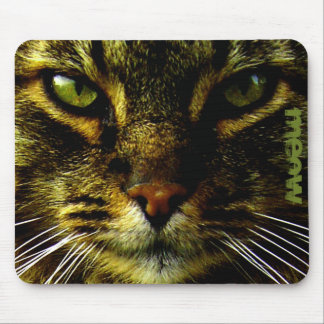 Mascota del gato que hipnotiza el texto de la foto alfombrilla de raton