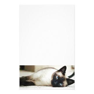 Mascota del gato siamés papeleria de diseño