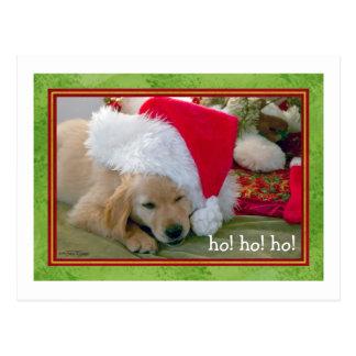 Mascotas de las patas de Santa - tarjeta de Navida Postales