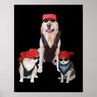Mascotas divertidos del motorista póster