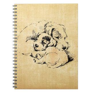 Mascotas mimosos de los perros mirada anaranjada libreta