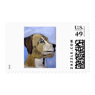 mascotas por el ginsburg de eric sellos