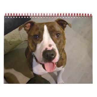 Mascotas preferidos calendario