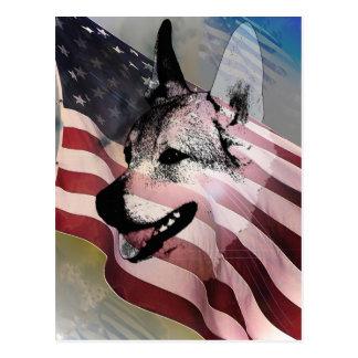 Mascotas y veterinarios rescatados tarjeta postal