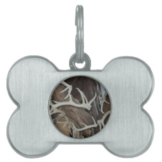 Masculine Photo Antlers Wrapped poles Pet ID Tag