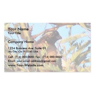 Masked Bob White Quail Business Card Template