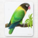 Masked Lovebird Green Mousepad