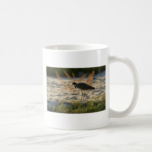 Masked Plover Classic White Coffee Mug